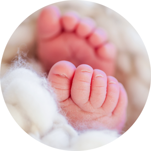 Newborn Photography Mini Session